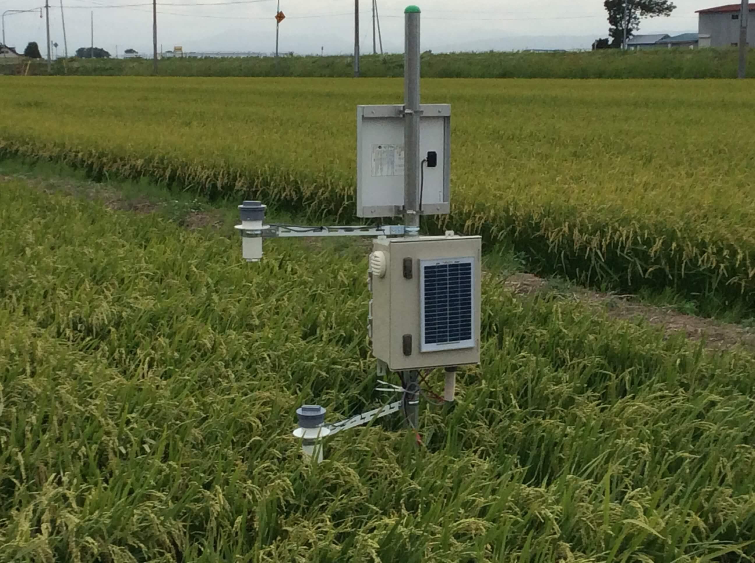 高さ別、水田の温度・湿度の取得